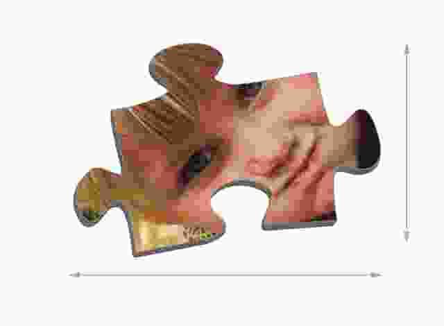 Maat van de puzzelstukjes 1000 stukjes